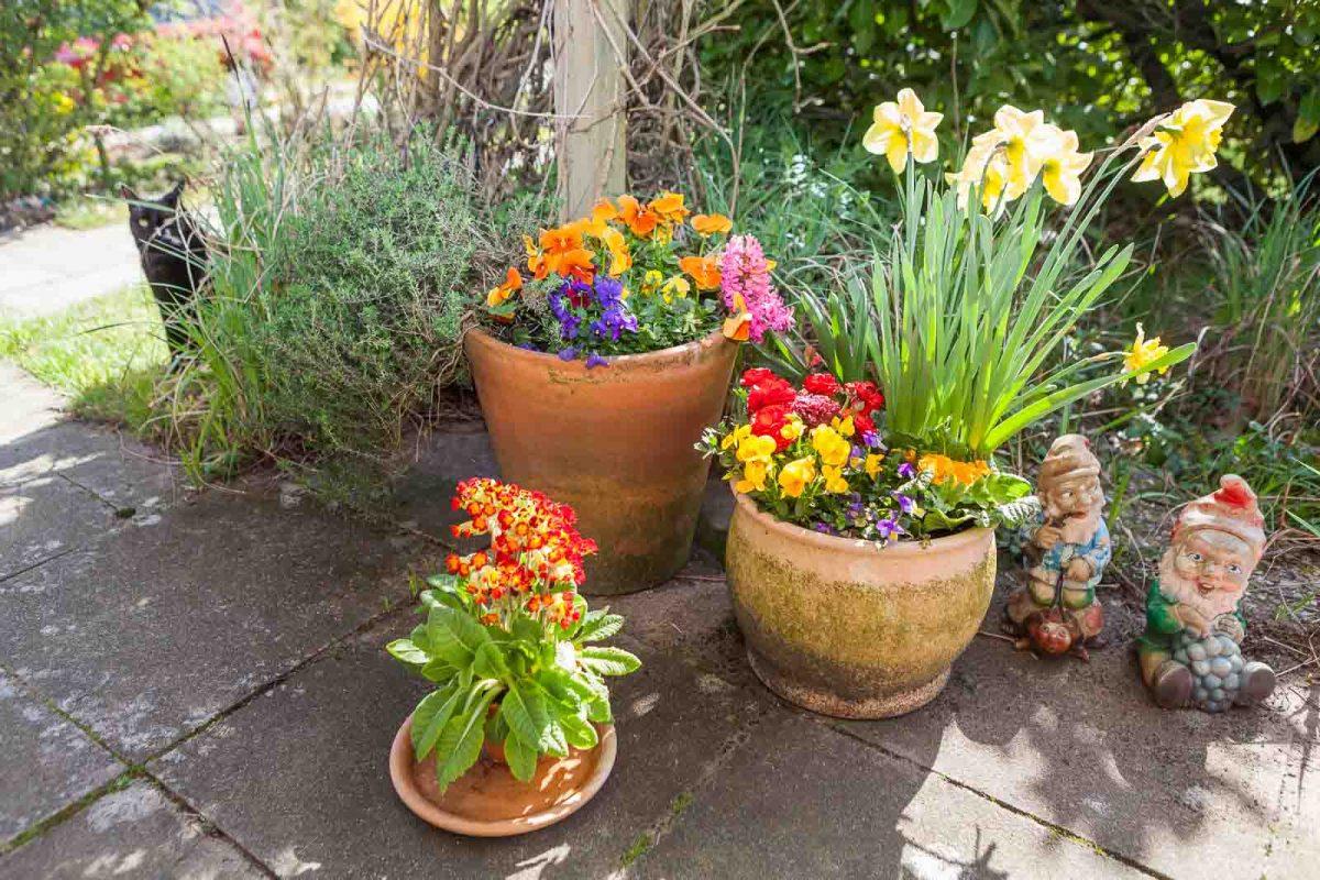 Blumen auf der Terrasse sorgen für Frühlingsstimmung